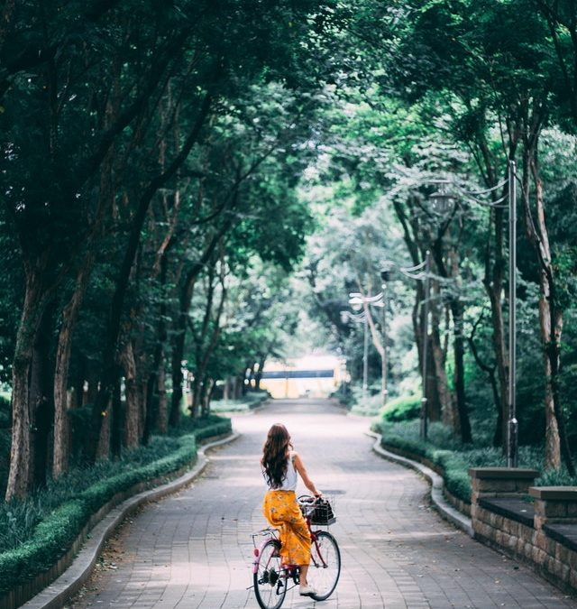 Waterdichte fietstas kopen voor de winter